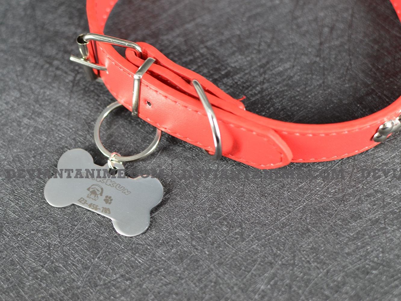 40503-Custom-Pet-Tag-3-5.jpg