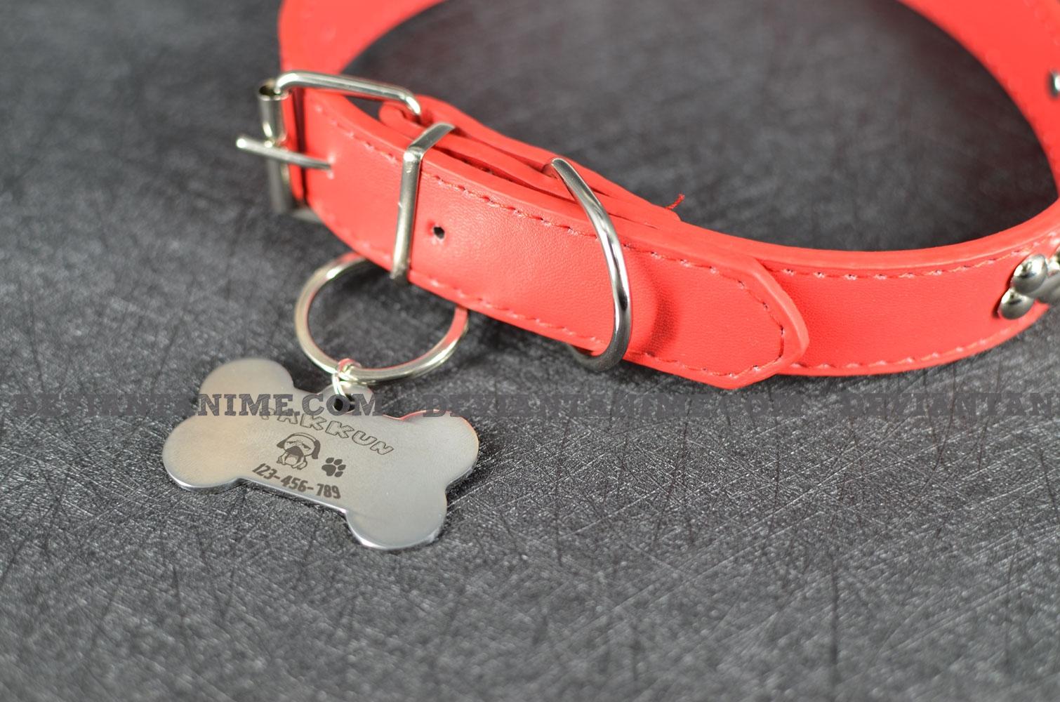 40503-Custom-Pet-Tag-3-6.jpg